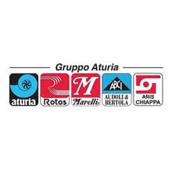 logo for Gruppo Aturia